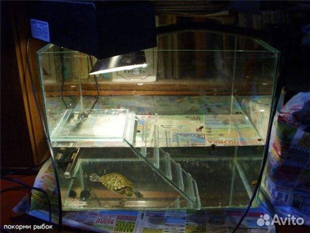 Как сделать аквариум своими руками в домашних для черепахи 90
