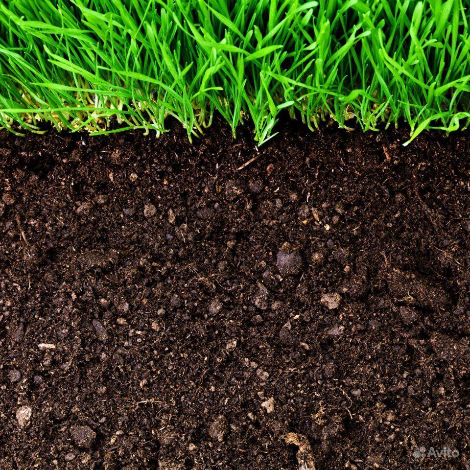 Чернозем плодородный, перегной, грунт, чёрный песо купить на Зозу.ру - фотография № 3