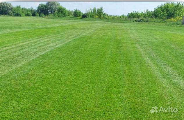 Рулонный газон купить на Зозу.ру - фотография № 7