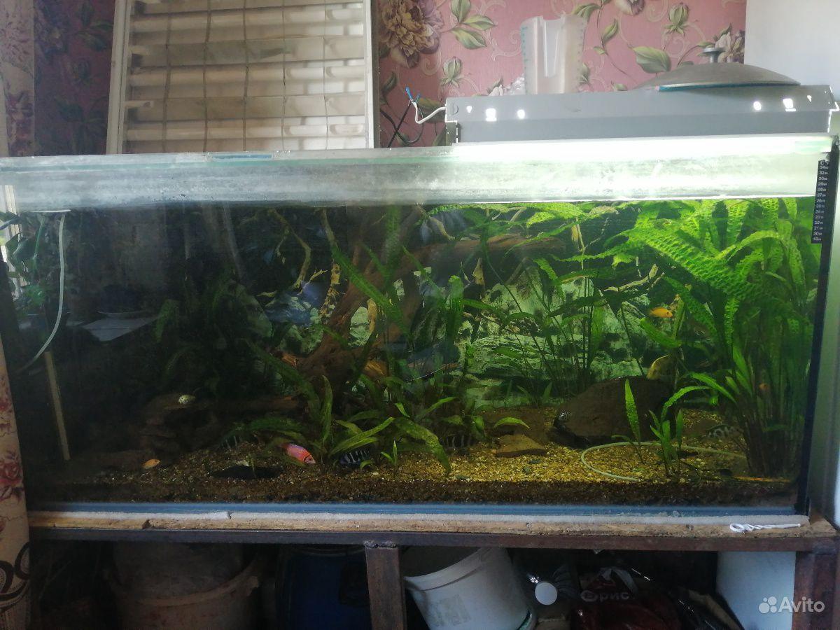 Украшение для аквариума купить на Зозу.ру - фотография № 4