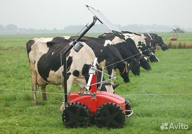реферат робототехника в сельском хозяйстве поселок Успенское