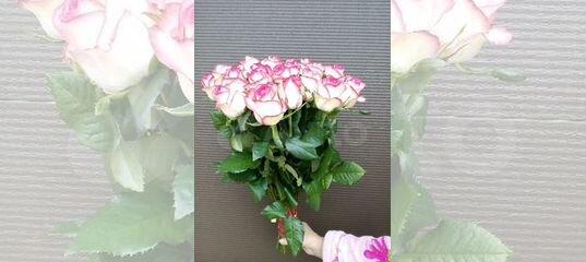 Купить цветы в кингисеппе с доставкой купить специй гвоздику
