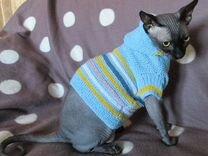 Вязаный свитер для сфинкса