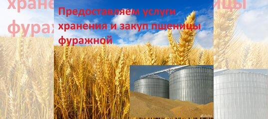 Элеватор для пшеницы efco ntr транспортер